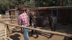 Cowboy horse and saddle PAL Stock Footage