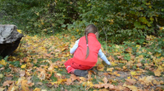 Child enthusiastically collects maple leaves Stock Footage