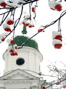 Brunches of ashberry in snow against the church Stock Photos