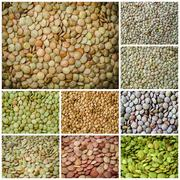 Lentils healthy food collage Stock Photos