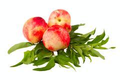 Nectarine fruits Stock Photos