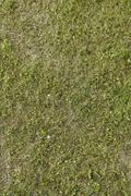 Green grass texture or background of golf course and football soccer field Stock Photos