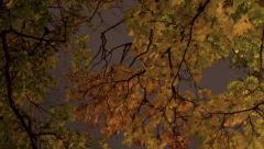 October night Stock Footage