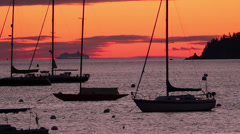 Dawn in a New England Harbor Stock Footage