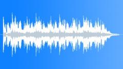San Juan Whales 3 - stock music
