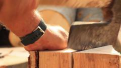 Logger close-up Stock Footage