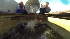 Fishermen Sorting Fish - stock footage