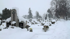Snowy winter Cemetery Stock Footage