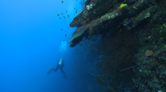 Scuba diver swimming along a coral reef - two footage Stock Footage