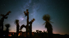 Astrophotography Time Lapse -Milky Way and Joshua Tree -Dolly Up Stock Footage