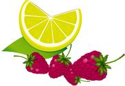 Stock Illustration of Raspberry