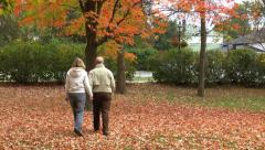 Mature Couple In Fall Stock Footage