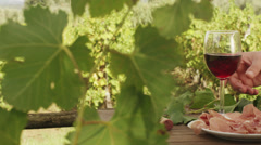 Glasses with Wine in Vineyard. v3. Close-Up. Stock Footage