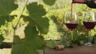 Stock Video Footage of Filling Glasses with Wine in Vineyard. v1. Close-Up.