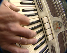 accordion - stock footage