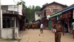 A herd of elephants walking in the Pinnawala village. Stock Footage