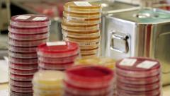 Laboratory Stuff Stock Footage