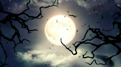 Flying bats in the light of spooky Moon -LOOP Stock Footage
