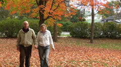 Middle Aged Couple In The Autumn - stock footage