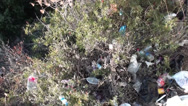Stock Video Footage of Litter in bushes top view trekking