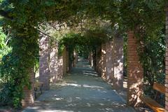 shady alley. - stock photo