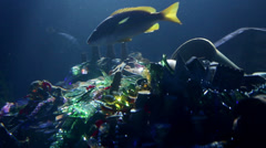 Close up on fishes and treasure in sea Stock Footage