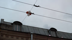 balloons on wires 01 - stock footage