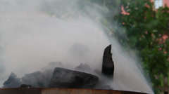 Holiday and Freetime Elements - Smoke Ash - stock footage