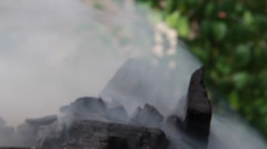 Holiday and Freetime Elements - Smoke Element 002 - stock footage