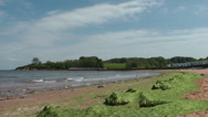 Stock Video Footage of Beach with Seeweed at Broadsands, near Paington, Devon, United Kingdom