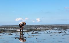Tyttö Pohjanmeren laskuveden Kuvituskuvat