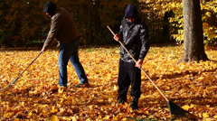People collects leaves in the fall episode 2 - stock footage