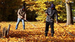 People collects leaves in the fall episode 3 - stock footage
