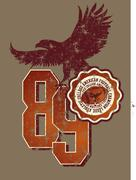 american football college vector art - stock illustration
