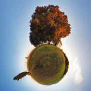 Little planet - globe at autumn time - 360 degrees panorama Stock Photos