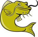 Stock Illustration of angry cartoon catfish fish