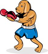 boxer dog with gloves - stock illustration