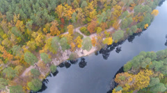 Beauty of the nature, wood and river l.Aerial clip - stock footage