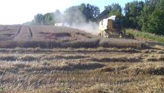 Harvesting. - stock footage