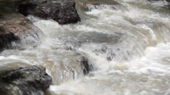 Murky Creek Water Stock Footage