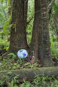 Inflatable globe in rainforest Stock Photos