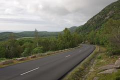 Overcast acadia park road Stock Photos