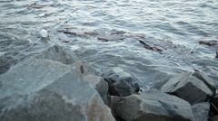 Slow Pan of Pollution and Driftwood on New York Coastline Stock Video Stock Footage