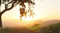 Sunset shots overlooking rolling hills of grass Stock Footage