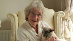 Senior woman holds cat and speaks to camera for video chat or video call Stock Footage