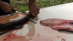 Filleting fish 4 Stock Footage