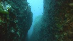 Diving in narrow underwater canyon, mediterranean sea Stock Footage