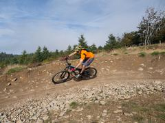 mountain biker riding trails in wales - stock photo