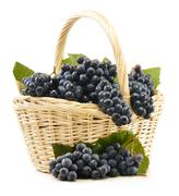 Wicker basket full of fresh red grapes isolated on white Stock Photos