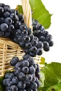 Stock Photo of wicker basket full of fresh red grapes isolated on white